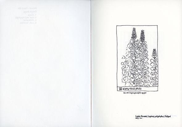 Performance Record- Plants page 2.jpg