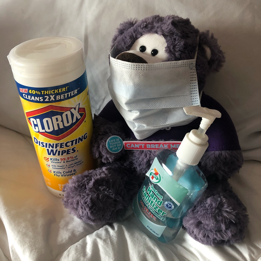 Coronavirus | Teddy bear wearing mask | Disinfectant