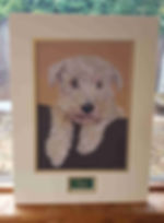 teo pet portrait with personalised name