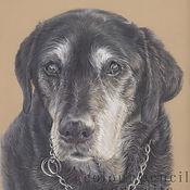 oscar-black-labrador-pet-memorial-portra
