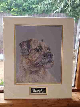 murphy pet portrait personalised name pl