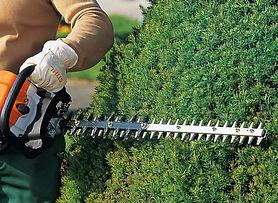 Hedge-Trimming-1.jpg