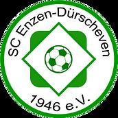 Enzen Logo.png