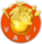 vavi-550.png