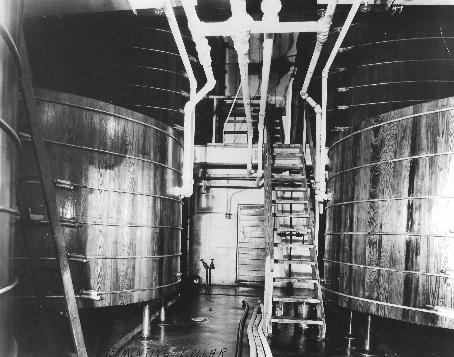 vertical fermentors.png