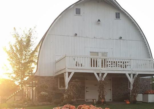 Mommsen's HARVEST HILLS Pumpkin Patch & Apple Orchard