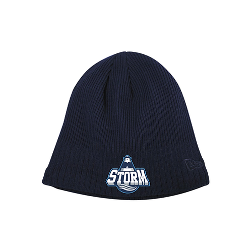 NE® Storm Fleece Lined Skull Beanie