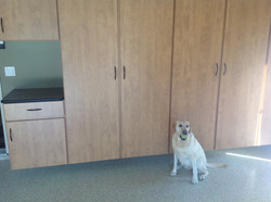 Garage Epoxy is great for pets!