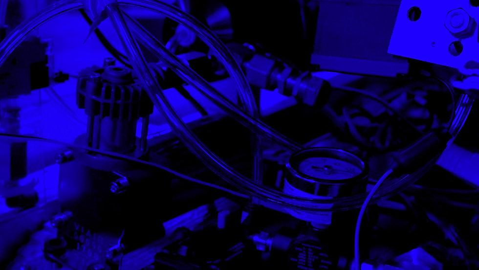 IMGP8964_edited.jpg