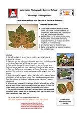 Chlorophyll Guide.jpg