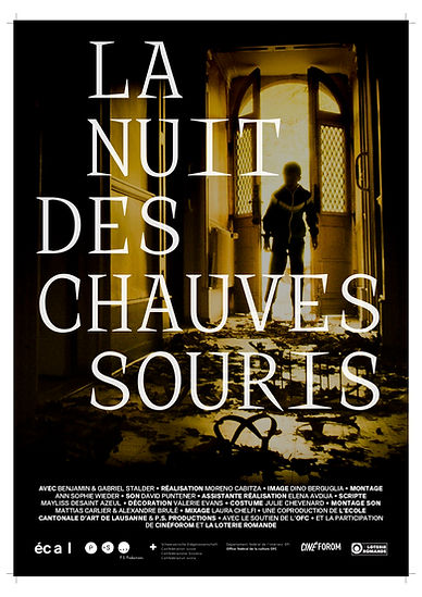 Poster_Chauves-souris.jpg