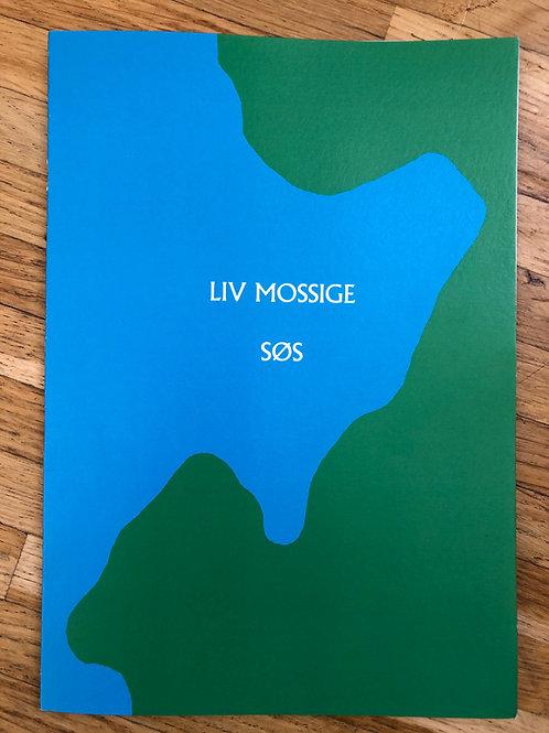 Boksplittsingel av Liv Mossige & Hanne Kolstø