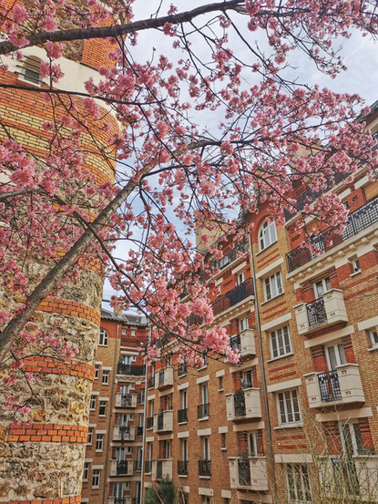 Chroniques Parisiennes #1 - Comme un air de printemps