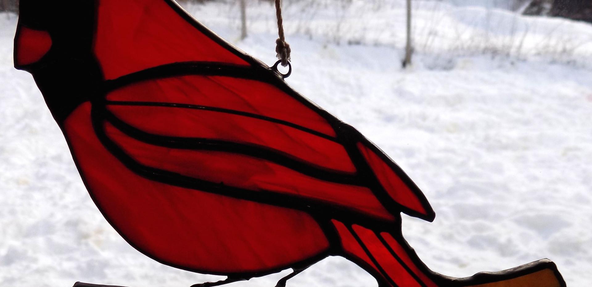 cardinal small.JPG