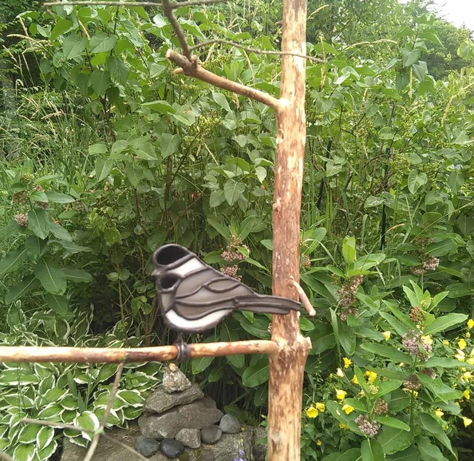 Chickadee on Branch.jpg