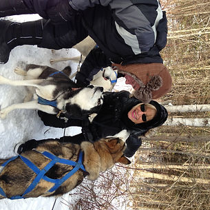 Friendly Siberian Huskies