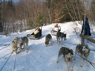 Vermont dogsled tour
