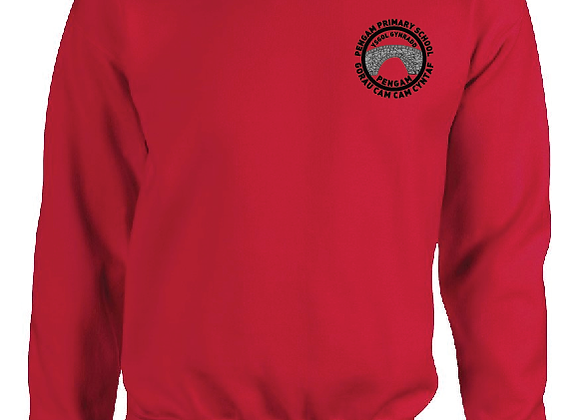 Pengam Primary - Sweater