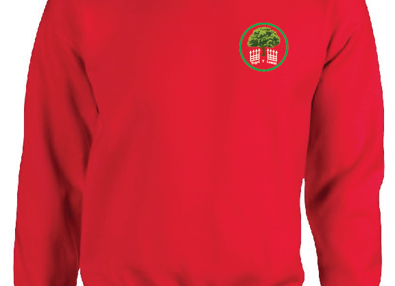Y Lawnt Primary - Sweater