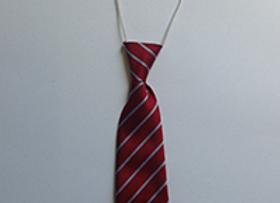 Georgetown Elastic Tie