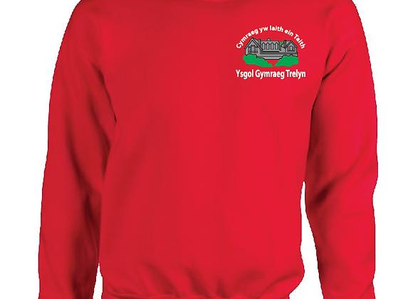 Ysgol Y Trelyn - Sweatshirt