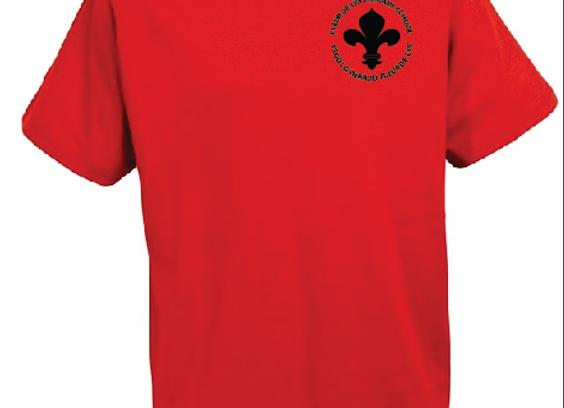 Fleur-de-lys Primary - P.E. T-Shirt