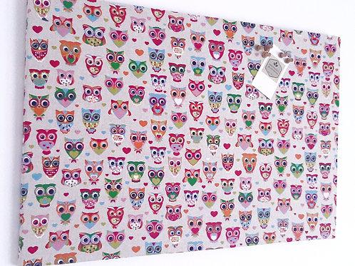 OWLS Cork Notice Board