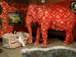 There's no denying the elephant in the room