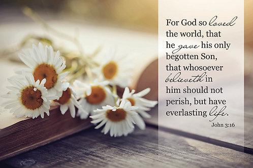 John 3:16, Bible verse wall print with daisies