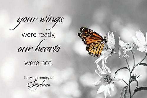Your Wings - Butterfly