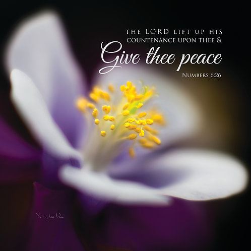 Peace, Thou wilt keep Him in perfect peace, Isaiah 26:3