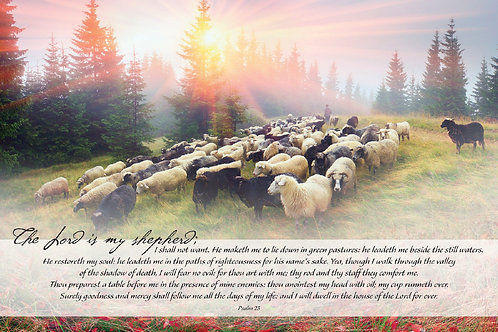 The Lord is my shepard, I shall not want. Psalm 23,