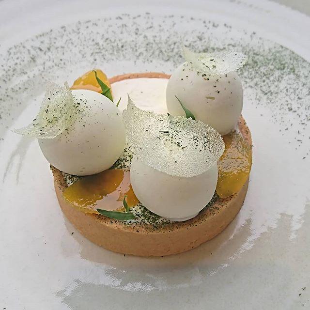 Tartelette au yuzu, estragon et fleur d'oranger__#pastry #patisserie #pastrylife #foodart #foodpic #