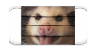 POSSUM MASK.jpg