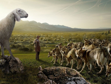 Sheep in the Midst of Wolves in the Workplace