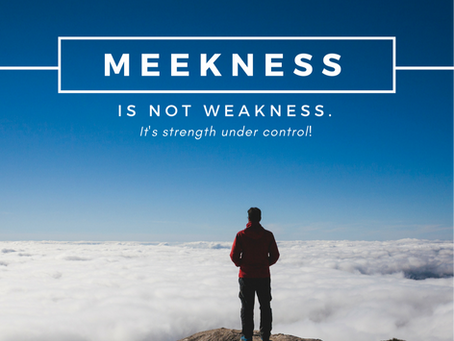 Christian Meekness is Not Weakness (Proverbs 11:2)
