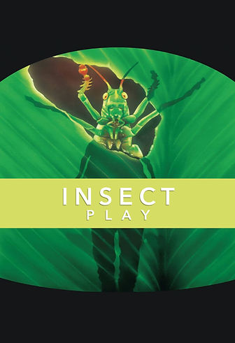 Insectos - Postal Web.jpg