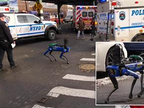 Más perros robots salen a la calle como policías de Nueva York
