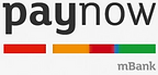 logo paynow.PNG