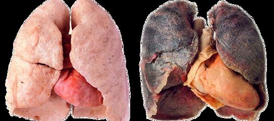 Effecten van roken wanneer je wilt stoppen met roken
