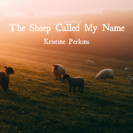 The Sheep Called My Name, Kristine Perkins