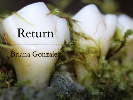 Return, Briana Gonzalez