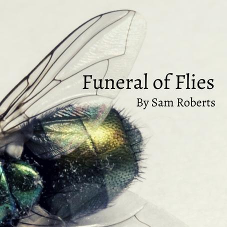 Funeral of Flies, Sam Roberts