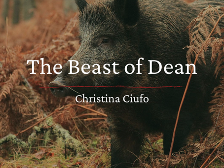 The Beast of Dean, Christina Ciufo