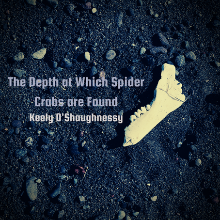 The Depth at Which Spider Crabs are Found, Keely O'Shaughnessy