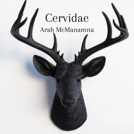 Cervidae, Arah McManamna