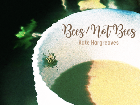 Bees/Not Bees, Kate Hargreaves