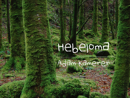 Hebeloma, Adam Kamerer