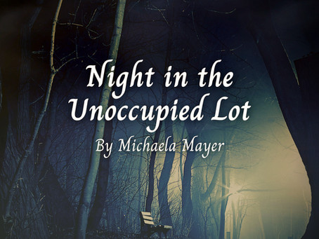 Night in the Unoccupied Lot, Michaela Mayer