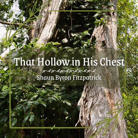 That Hollow in His Chest, Shaun Byron Fitzpatrick